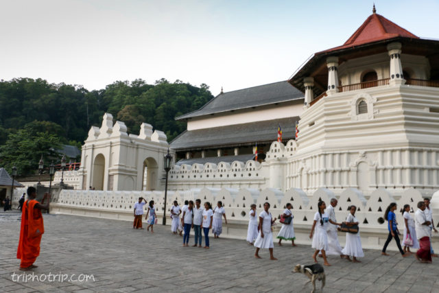 srilanka-4743