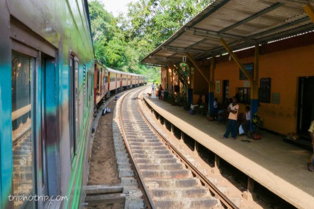 srilanka-4881