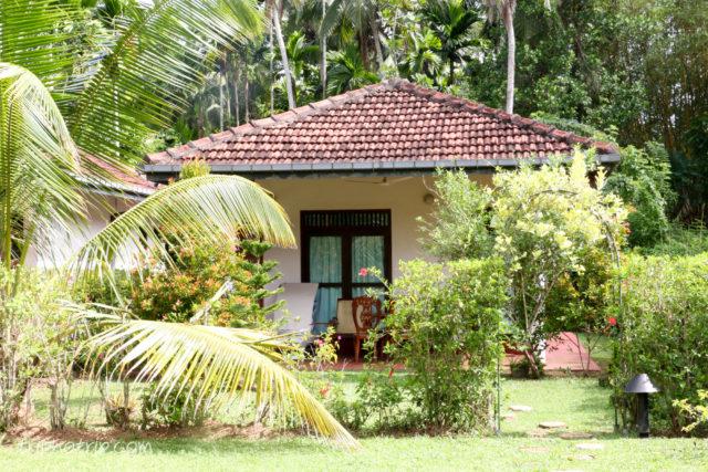 srilanka-4917