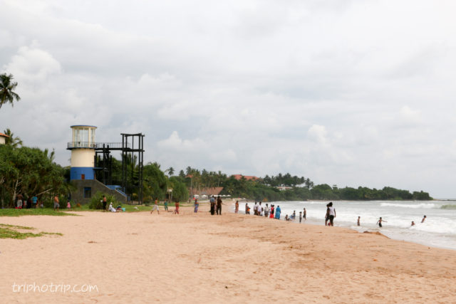 srilanka-5010